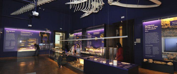 Naravoslovni dan – obisk Prirodoslovnega muzeja Ljubljana
